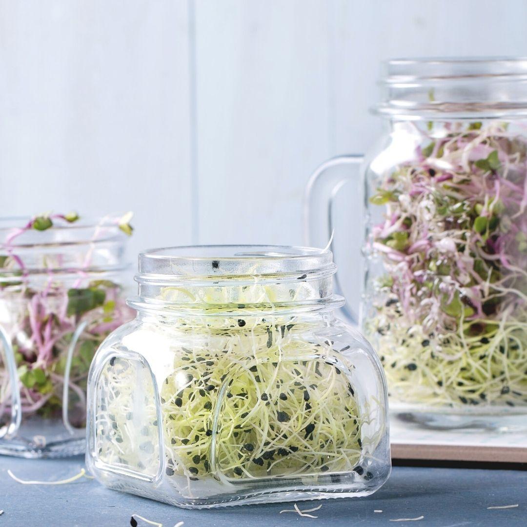 Sprossen zum Würzen ohne Salz. Salzarm kochen beim Basenfasten